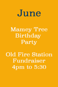 Mamey Tree Birthday Party @ Old Fire Station Museum | Key West | Florida | United States